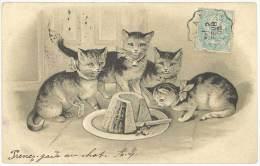 Cpa Groupe De 4 Chats / Chatons, Et Gateau ( AN ) - Cats