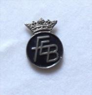 Pin FEB -P255 - Pin's