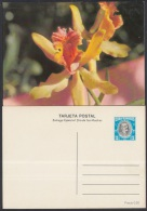 1982-EP-60 CUBA 1982. Ed.129c. MOTHER DAY SPECIAL DELIVERY. POSTAL STATIONERY. A. MACEO. FLORES. FLOWERS. UNUSED.