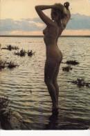 Naturiste Au Soleil Couchant - Nus Adultes (< 1960)