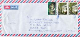 Postal History Cover: Burundi With Flower, Waterfall Stamps - Burundi
