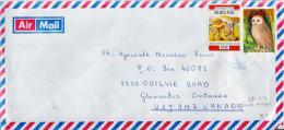 Postal History Cover: Burundi With Mushroom, Owl Stamps - Burundi