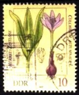 DDR / East-Germany: ´Herbstzeitlose, Colchicum Autumnale, 1982´ / ´Autumn Crocus´, II Mi. 2691; Yv. 2341; Sc. 2254 Oo - Toxic Plants