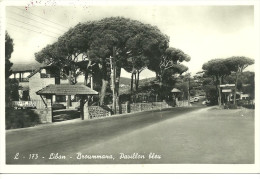 Lebanon Liban Broummana Pavillon bleu