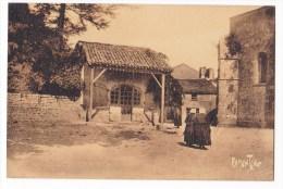 Etude à St Hilaire Des Loges. - Saint Hilaire Des Loges