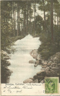_5pk-807: N° 41:  / PC: Brudslöjan,Rrollhättan > Anvers 1908 - Suède