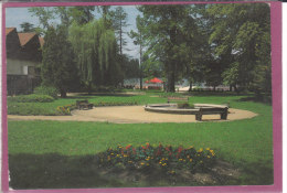 24.- RIBERAC .- Le Jardin - Riberac