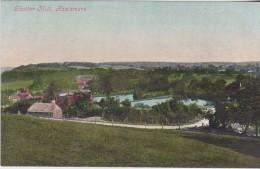HASLEMERE - SHOTTER MILL - Surrey