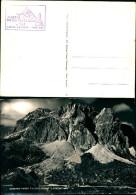 1250 )cartolina-albero Passo Falzarego Lagazuoi - Altre Città