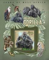 Sierra Leone. 2015 Gorillas. (011b) - Gorillas