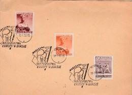 POLOGNE - PETIT ENCART AFFRANCHIE TIMBRES N° 706 A 708 OBLITERATION SPECIALE CHAMPIONNAT D'EUROPE BOXE A VARSOVIE - Maximumkarten