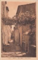 Cp , 06 , BIOT , Rue Basse - Biot