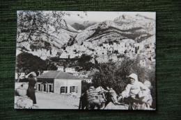 Moliv Iz Staroga Bara - Montenegro