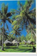 Polynésie Française-Des Fares En Pendanus Et Niau De Bora Bora  (habitation Polynésienne)Ed Parfumerie TIKI - Polynésie Française