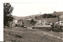 J-LAGRIMONE-SALUMIFICIO MANICI - Parma
