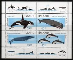 Islande - BF23 ** Baleines & Cétacés (whales) - Arctic Wildlife