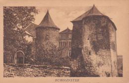 Luxemburgo--Chateau--Burglinster - Castillos