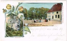 HALDENHOF Ueberlingen 1900 Litho - Non Classés