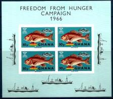 1966 GHANA Pesci-fish Foglietto Nuovo ** MNH - Ghana (1957-...)