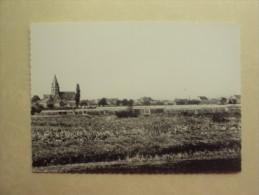 18681 - HAMME - MOERZEKE KASTEL - SERREN - ZIE 2 FOTO´S - Hamme
