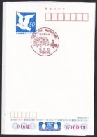 Japan Commemorative Postmark, Kanto Flowers Monorail Train (jc7762) - Japan