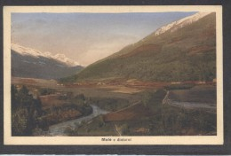 9847-MALE'(TRENTO)-FP - Trento