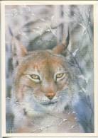 Lynx - (by Illustrator A. Isakov) - Animals