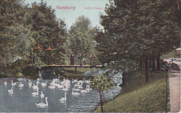 "AK Hamburg - Gurlitt-Insel - Bouillon ""Perfekt"" Werbung - 1908 (16391) - Allemagne"