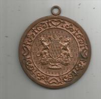 Médaille , Armoirie , Blason , Frais Fr : 1.50€ - Other