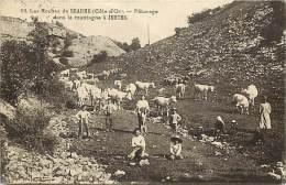 - Cote Dor - Ref- A301 - Les Roches De Beaume - Paturage Dans La Montagne A Jeutes - Carte Bon Etat - - France