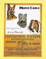 """CPM MONTE CARLO Repro De L´affiche """" Socièté Canine De MONACO 26 Et 27 Mars 1932 """"  TOP - Chiens"""