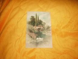 CARTE POSTALE ANCIENNE  CIRCULEE DE 1903. / SIGNE F.W. HAYES./ PAYSAGE + CYGNE / CACHET + TIMBRE - Ilustradores & Fotógrafos