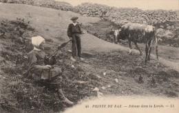 LA POINTE DU RAZ -29- FILEUSE DANS LA LANDE - La Pointe Du Raz