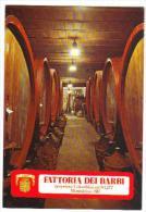 Fattoria Dei Barbi A Montalcino (Siena) - Cantina Di Invecchiamento - Fattorie