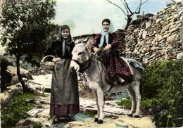 89180 - Folklore     Types Corses       Jeunes  Villageoises Dont  Une  Assise Sur Un Petit Ane - Costumi
