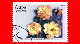 CUBA - Nuovo Oblit. - 2007 - Fiori - Rose - Alison Whealtcroft - 15 - Cuba