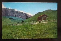 North Caucasus, Russia, Chechnya. Assa River Church  - 1974 - Tchétchénie