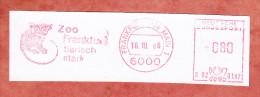 Ausschnitt, Francotyp-Postalia B02-0387, Aeffchen, Zoo Frankfurt Tierisch Stark, 80 Pfg, 1986 (77945) - Storia Postale