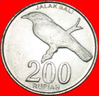 ★BIRD: INDONESIA ★ 200 RUPEES 2003! Not 2008! LOW START ★ NO RESERVE!