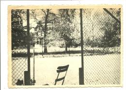 Soignies Les Ormes Collège Saint Vincent Tennis  ( Carte Ayant Voyagé ) - Soignies