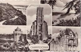 CPSM Multivues - CHAMPTOCEAUX (49)  - 1956 - Champtoceaux