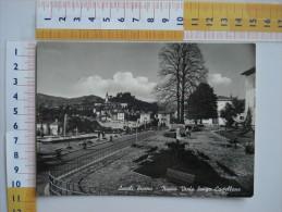 ASCOLI PICENO NUOVO VIALE LUNGO CASTELLANO  Bici Animata - FG - VIAGGIATA 1956 *(MAR2377 - Ascoli Piceno