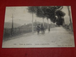TOUR DE VILADOS  -  VALLEE  D'ARGELES   -  1907  -  (2 Scans) - Argeles Gazost