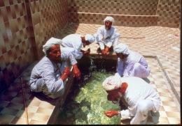 Asie : Arabes D´Oman (éd Institu Du Monde Arabe) - Oman