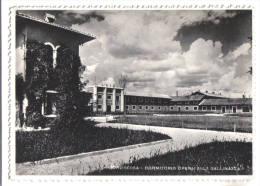 Torviscosa, Dormitorio Operai Alla Gallinazza - F.G. -  Anni ´1950 - Udine