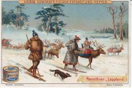 Chromo LIEBIG-S602-c (Ed Allemande)-Last Und Nutztiere-Rennthier Lappland - Liebig