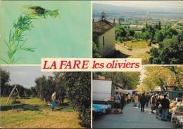 LA FARE LES OLIVIERS : Aux Chants Des Cigales - La Chapelle - Le Marché - Les Cueillette Des Olives - France