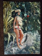 Tahiti , Jardin Tropical à Tiarei , Vahiné Style Filles Des Mers Du Sud  , Polynésienne , Tahitienne - Polynésie Française