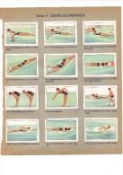 12 Vignettes / Timbres Publicitaires De Chocolats De La Suisse, 1938, Schwimmen, Natation - Erinofilia