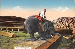 "03676  ""ELEPHANT PILING TEAK""  ANIMATA. CART. ILLUSTR. POST. ORIGINALE. NON SPEDITA - Myanmar (Burma)"